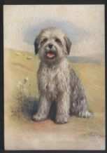 Old English sheepdog tobacco cigarette card postcard dogs 1930's